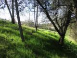 29490 Morgan Canyon Road - Photo 6