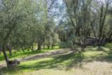 40298 Five Oaks Circle - Photo 24