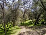 40298 Five Oaks Circle - Photo 40