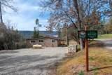 43100 Sugar Pine Drive - Photo 15