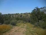 0 Road 210 - Photo 9