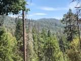 0 Finegold Creek Dr Drive - Photo 1