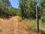 0 Finegold Creek Dr Drive - Photo 3