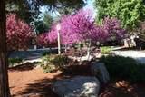7453 Sequoia Avenue - Photo 66