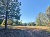 4-Acres Foothill Lane - Photo 5