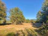 4-Acres Foothill Lane - Photo 6