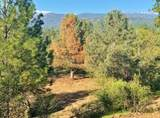 4-Acres Foothill Lane - Photo 8