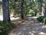 40573 Road 274 - Photo 13