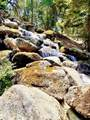 28876 Topaz Road - Photo 86