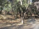 47022 Forest Glenn Road - Photo 31