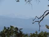 0-Lot 1392 Lilley Mountain Drive - Photo 12
