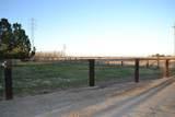 4441 San Diego Avenue - Photo 13