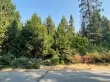 41629 Timber Ridge Lane - Photo 3