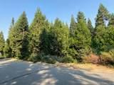 41629 Timber Ridge Lane - Photo 4