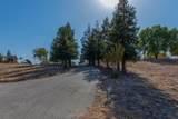 14430 Killarney Drive - Photo 59