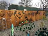 49266 Golden Oak Drive - Photo 4