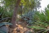 31035 Palm Drive - Photo 70