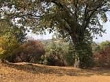 31973 Mountain Lane - Photo 35