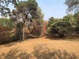 31973 Mountain Lane - Photo 38