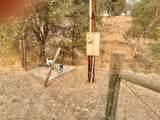 31012 Morgan Canyon Road - Photo 11
