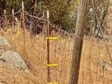 31012 Morgan Canyon Road - Photo 13