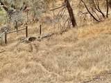 31012 Morgan Canyon Road - Photo 16