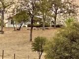 31012 Morgan Canyon Road - Photo 8