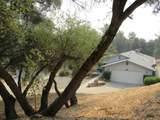 40298 Five Oaks Circle - Photo 2