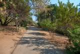 33144 Road 233 - Photo 40