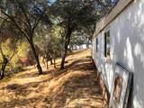 43794 Road 415 - Photo 7