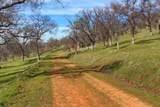 0-160 AC Cotton Creek Road - Photo 20