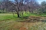 0-160 AC Cotton Creek Road - Photo 28