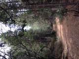 0 Taylor Spur - Photo 8