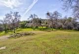 4359 Alamo Creek - Photo 48