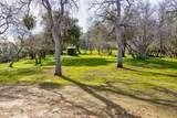 4359 Alamo Creek - Photo 50