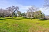 4359 Alamo Creek - Photo 51