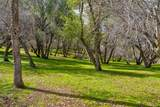 4359 Alamo Creek - Photo 61