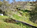39874 Lilley Mountain Drive - Photo 46