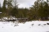 5859 Dogwood Creek Drive - Photo 3