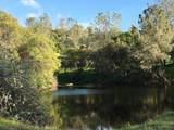 26035 Dry Pond Road - Photo 38