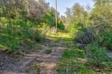 0-5.9AC Blackberry Trail - Photo 16