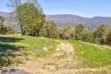 0-5.9AC Blackberry Trail - Photo 8