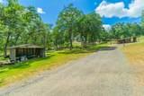 29262 Forty Ranch Lane - Photo 22
