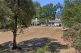 50145 Five Oaks Lane - Photo 50