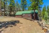 54695 Dinkey Creek Road - Photo 19