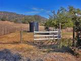 38422 Squaw Valley Road - Photo 29