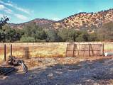 38422 Squaw Valley Road - Photo 30