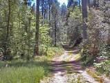 48515 Todd Eymann Road - Photo 27