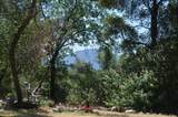 45315 Forest Ridge Drive - Photo 10