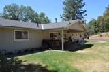 45315 Forest Ridge Drive - Photo 3